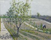 The Garden of Petit Gennevilliers (Caillebotte)