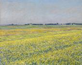 The Plain of Gennevilliers - Yellow Fields (Caillebotte)