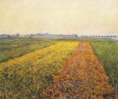The Yellow Fields at Gennevilliers (Caillebotte)